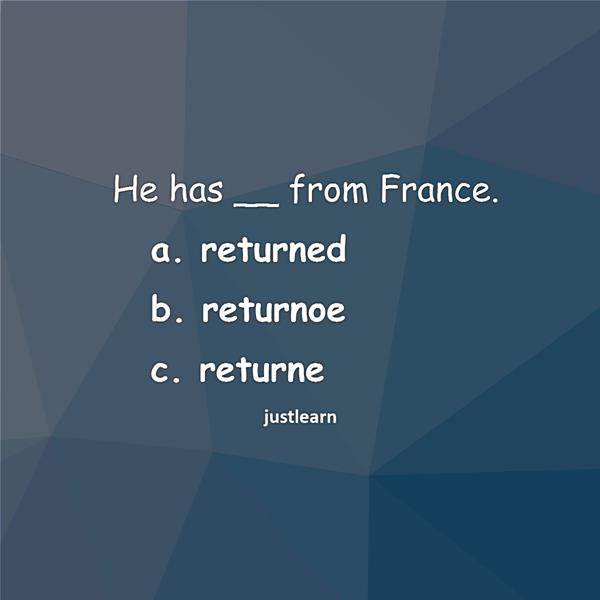He has __ from France. a. returned b. returnoe c. returne
