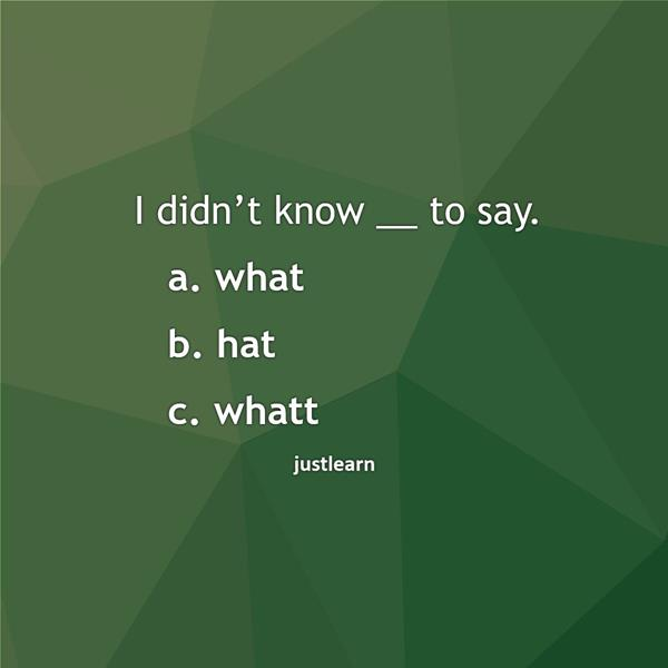 I didn't know __ to say. a. what b. hat c. whatt