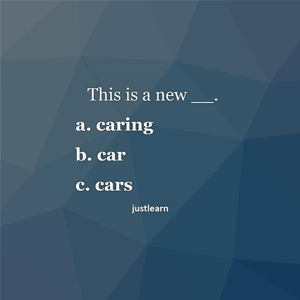 This is a new __. a. caring b. car c. cars