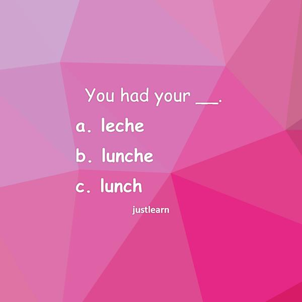 You had your __. a. leche b. lunche c. lunch