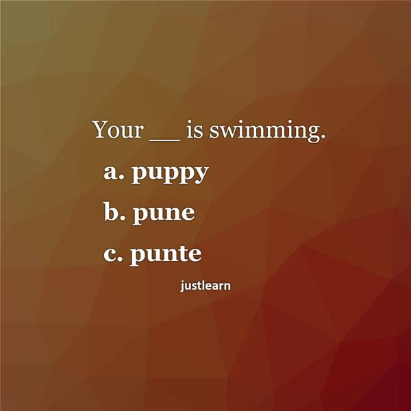 Your __ is swimming. a. puppy b. pune c. punte